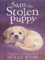 Sam the Stolen Puppy