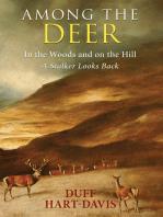 Among the Deer