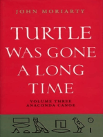 Turtle Was Gone a Long Time Volume 3