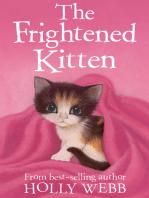 The Frightened Kitten