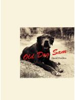 Old Dog Sam