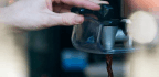 Drink Coffee? It Won't Hurt You, and May Reduce Your Risk of an Early Death