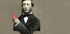 Thoreau on Trump, Twitter, and Fake News