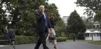 Despite CNN Jab, Trump Loves Big Media