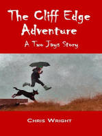 The Cliff Edge Adventure
