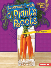Experiment with a Plant's Roots