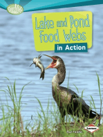 Lake and Pond Food Webs in Action