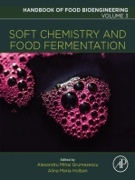 Soft Chemistry and Food Fermentation