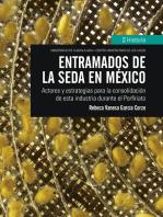 Entramados de la seda en México: Actores y estrategias para la consolidación de esta industria durante el Porfiriato