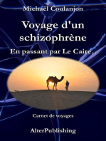 Voyage d'un schizophrène - En passant par Le Caire