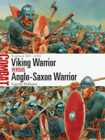 Viking Warrior vs Anglo-Saxon Warrior
