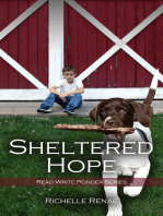 Sheltered Hope