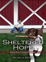 Sheltered Hope
