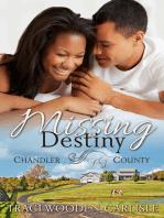 Missing Destiny (A Chandler County Novel)