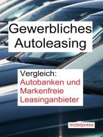 Gewerbliches Autoleasing