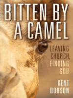 Bitten by a Camel