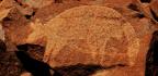 Animal Images In Prehistoric Rock Art