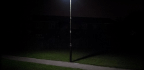 Artificial Light Deters Nocturnal Pollinators, Study Suggests