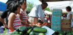 7 Fun Facts for National Farmers Market Week