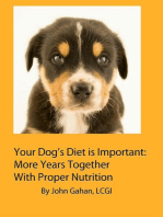 Your Dog's Diet is Important