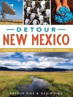 Detour New Mexico