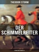 Der Schimmelreiter (Storms Meisternovelle)