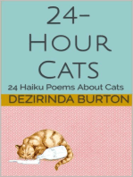24-Hour Cats