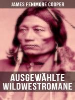 Ausgewählte Wildwestromane von James Fenimore Cooper