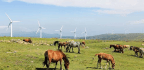 Almost Every Country in the World Can Power Itself With Renewable Energy