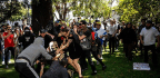Violence Breaks Out at Berkeley Protest