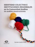 Identidad colectiva e instituciones regionales en la Comunidad Andina: Un análisis constructivista
