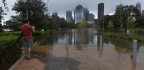 How to Track the Ongoing Fallout From Harvey