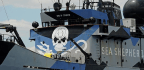 Sea Shepherd Says This Year It Won't Send Ships To Disrupt Japanese Whalers