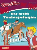 Bibi & Tina - Das große Teamspringen: Roman zum Hörspiel