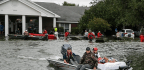 As Houston Floodwaters Recede, Returning Residents Make Some Grim Discoveries