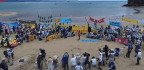 Okinawans Protesting US Military Base Asked If They 'Understand Japanese'