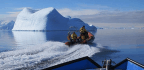 What Happens When You Heat the Antarctic Ocean by a Single Degree?