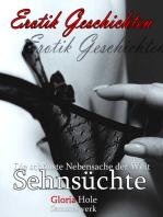 Sehnsüchte - Erotik Roman