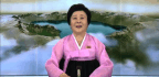 North Korea's 'Pink Lady'