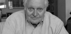 The Ashbery Files