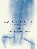 Saving Stanley