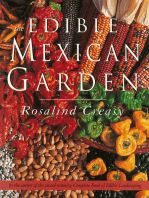 Edible Mexican Garden