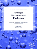 Hydrogen Electrochemical Production
