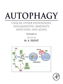 Autophagy: Cancer, Other Pathologies, Inflammation, Immunity, Infection, and Aging: Volume 12