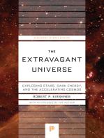 The Extravagant Universe