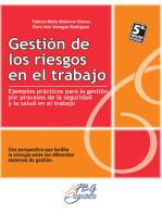 Gestión de los riesgos en el trabajo: Ejemplos prácticos para la gestión por procesos de la seguridad y la salud en el trabajo