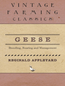Geese - Breeding, Rearing and Management