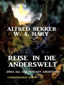 Reise in die Anderswelt: Zwei All Age Fantasy Abenteuer: Cassiopeiapress Junior: Alfred Bekker