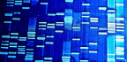 Precision Medicine and Aging Have This in Common
