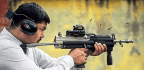 This Made in India Gun, With a Cult Following Among Gamers, Soon to Join Army's Arsenal